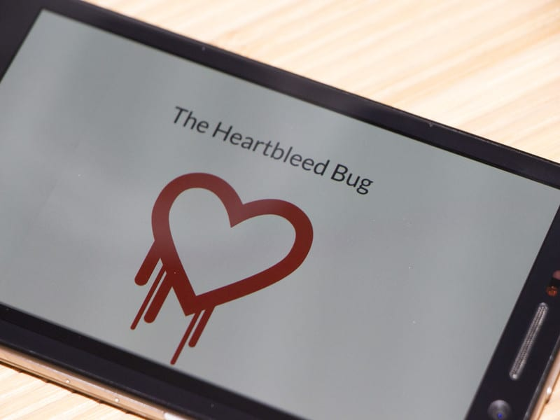 The Heartbleed Vulnerability – Now What?