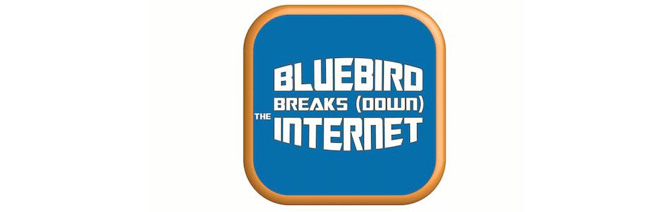 Bluebird Breaks (Down) the Internet