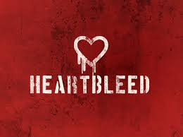 Seven Tips to Stay Ahead of the Heart bleed Bug